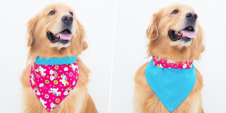 bandana para cachorro unicórnio rosa