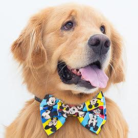gravata para cachorro micke