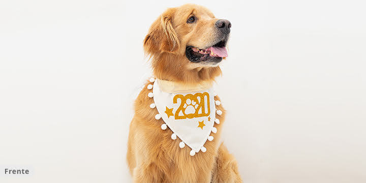 bandana para cachorro princess