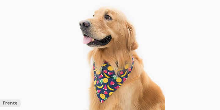 bandana para cachorro frutas