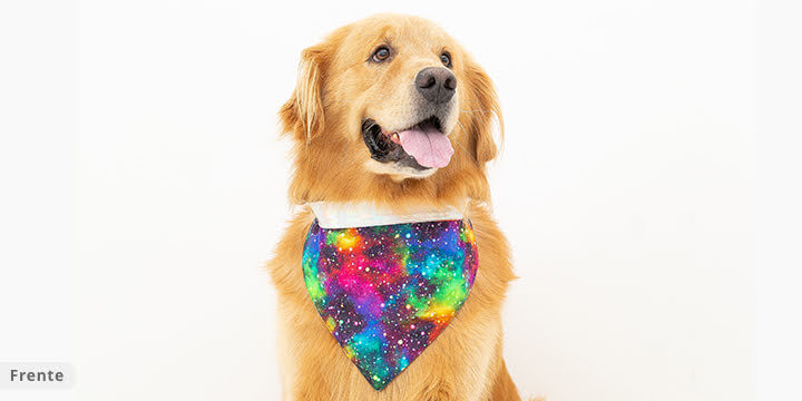 bandana para cachorro galaxia